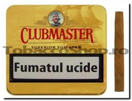 poza Tigari de foi Clubmaster Superior Sumatra