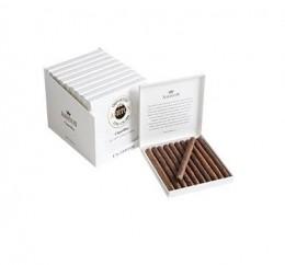 poza Tigari de foi Ashton Small Cigars Cigarillos
